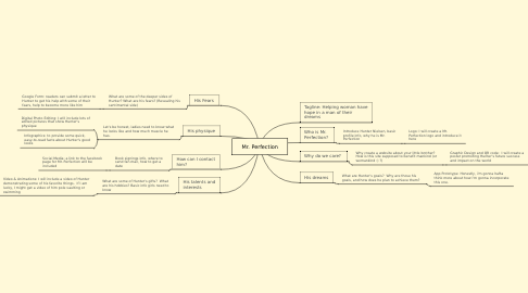 Mind Map: Mr. Perfection