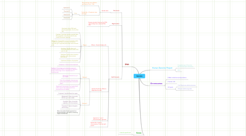 Mind Map: Genetics