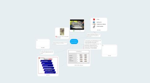 Mind Map: evaluacion secundaria