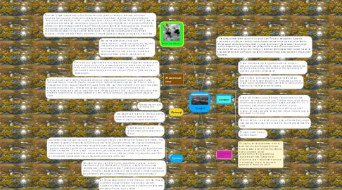 Mind Map: Тундра