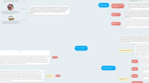 Mind Map: Principios básicos de comunicación