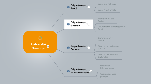 Mind Map: Université Senghor