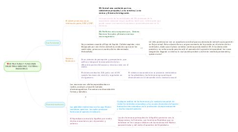 Mind Map: ESTRUCTURAS Y FUNCIONES DELSISTEMA NERVIOSO Y SISTEMA ENDOCRINO