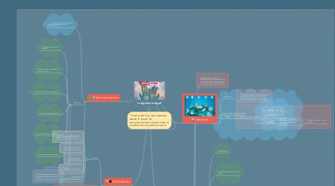Mind Map: la logistica integral