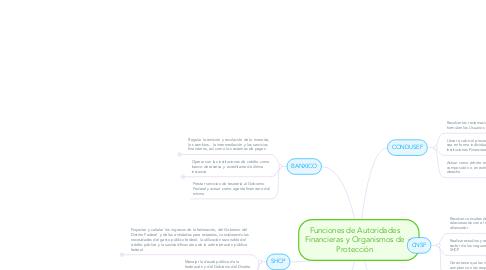 Mind Map: Funciones de Autoridades Financieras y Organismos de Protección