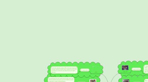 Mind Map: BOARD