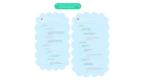 Mind Map: • Estructuras y Funciones del SISTEMA NERVIOSO.