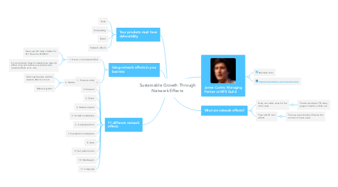 Mind Map: Sustainable Growth Through Network Effects