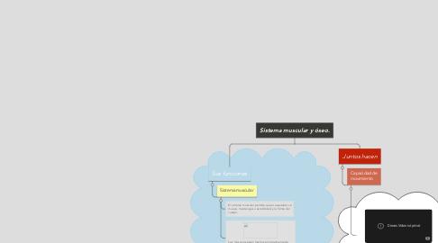 Mind Map: Sistema muscular y óseo.
