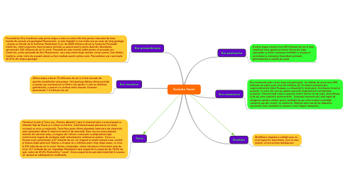 Mind Map: Evolutia Terrei