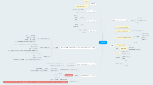Mind Map: KENTA