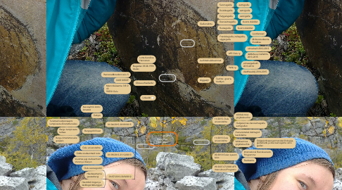 Mind Map: Curriculum Vitae Karoliina Hannonen