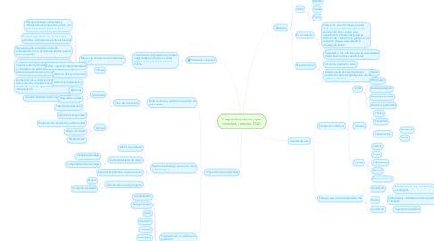 Mind Map: Comprensión de conceptos, modelos y teorías: DINA