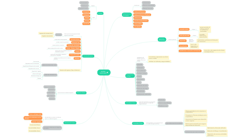 Mind Map: NUEVE BLOQUES