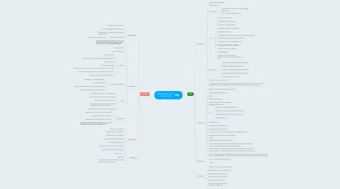 Mind Map: Flipped Classroom Argumente
