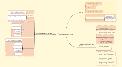 Mind Map: PROKARYOTIC CELLS (Include Bacteria and Archae)