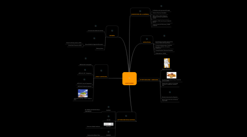 Mind Map: GRUPO BIMBO