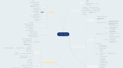 Mind Map: 1. Semester: Demokratie und sozialer Rechtsstaat