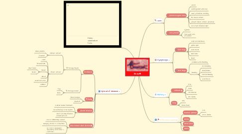 Mind Map: Ebola