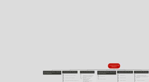 Mind Map: • La evolución del Software