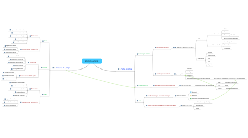 Mind Map: ETAPAS DA TESE