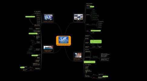 Mind Map: Despacho Aduanal de Mercancías
