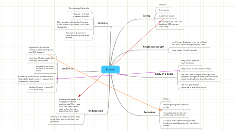 Mind Map: Koalas!!