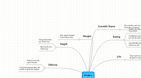 Mind Map: Koala