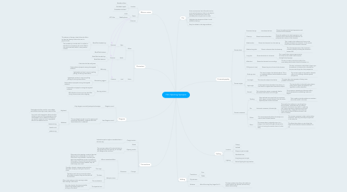 Mind Map: Film Opening Synopsis