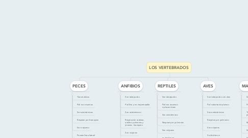Mind Map: LOS VERTEBRADOS