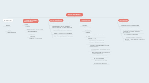 Mind Map: PRIMER RESPONDIENTE