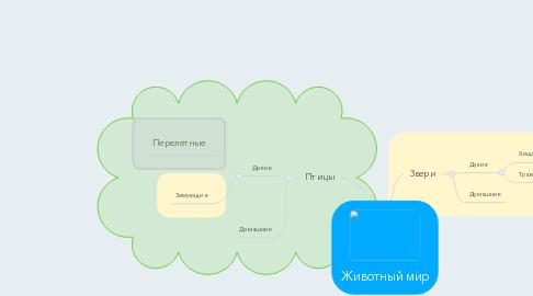 Mind Map: Животный мир