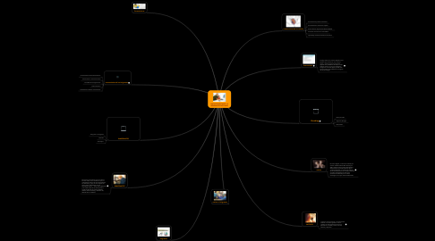 Mind Map: NATIVOS DIGITALES V.S IMIGRANTES DIGITALES