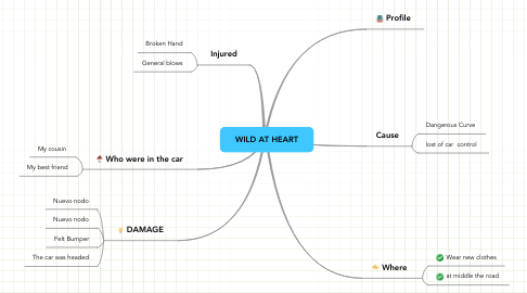 Mind Map: WILD AT HEART