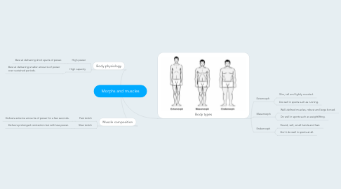 Mind Map: Morphs and muscles