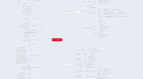 Mind Map: Plano de negócios