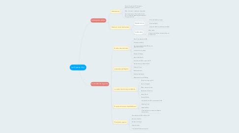 Mind Map: La Guerra Civil
