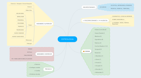 Mind Map: OSTEOLOGIA
