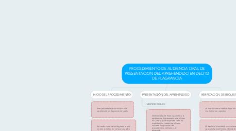 Mind Map: PROCEDIMIENTO DE AUDIENCIA ORAL DE PRESENTACION DEL APREHENDIDO EN DELITO DE FLAGRANCIA