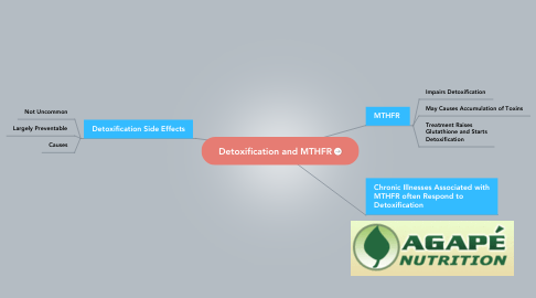 Mind Map: Detoxification and MTHFR