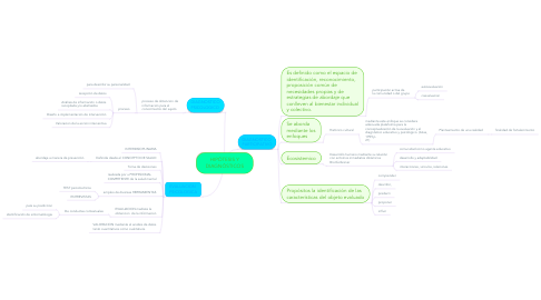 Mind Map: HIPÓTESIS Y DIAGNÓSTICOS