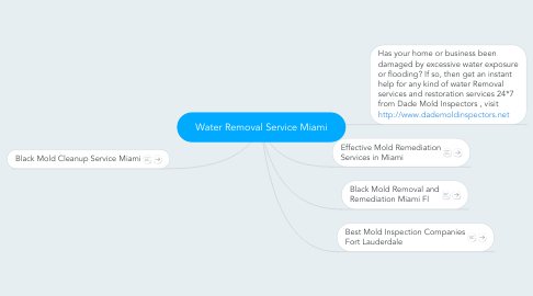 Mind Map: Water Removal Service Miami