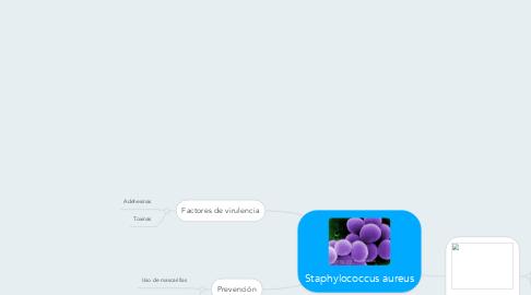 Mind Map: Staphylococcus aureus