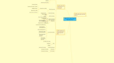 """Mind Map: Mi """"PLWE"""" _ Espacio Personal de Trabajo y Aprendizaje en RED PKM + PLM + PPM"""