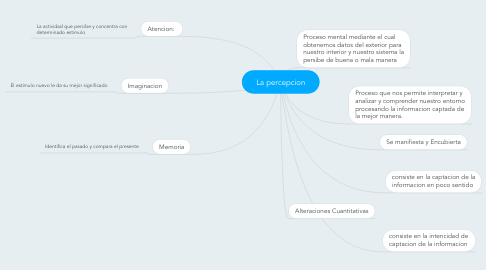 Mind Map: La percepcion