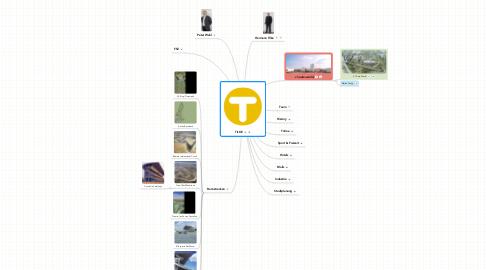 Mind Map: TILKE