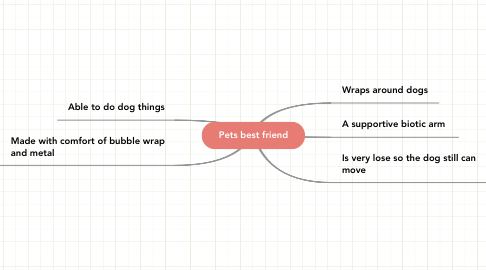 Mind Map: Pets best friend