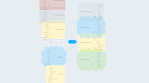 Mind Map: Mediamarkt