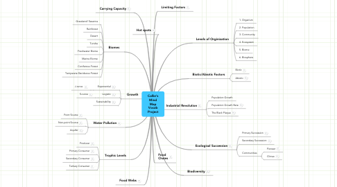 Mind Map: Callie's Mind Map Vocab Project