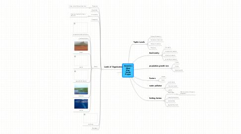Mind Map: Amanda's Mind Map Vocab Project